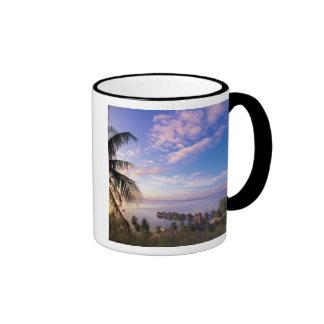 French Polynesia, Moorea. View of the Baie de Coffee Mugs