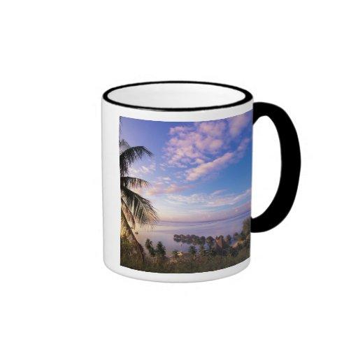 French Polynesia, Moorea. View of the Baie de Ringer Mug