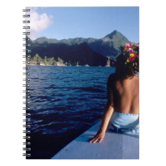 French Polynesia, Moorea. Woman enjoying view on Notebook