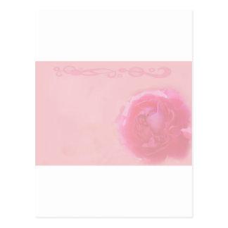 French Rose II Postcard