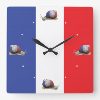 French snail flag square wall clock