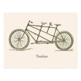 French Tandem 1920 Postcard