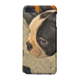 French Terrier iPod Touch (5th Generation) Case
