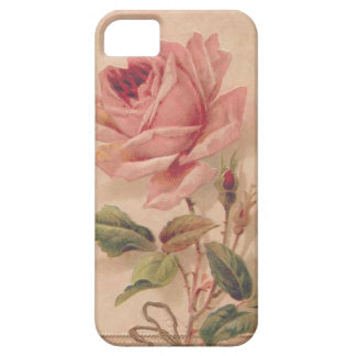 French Victorian Pink Rose iPhone SE/5/5s Case