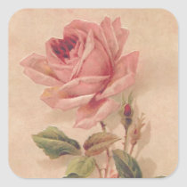 French Victorian Pink Rose Square Sticker