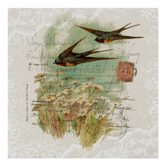 French Victorian Swallows Daisies and Lace Poster