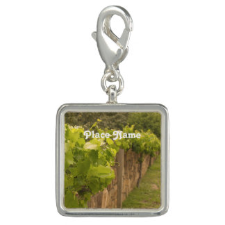 French Vineyard Charms