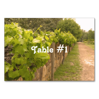 French Vineyard Table Card