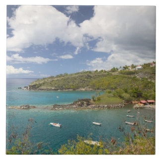 FRENCH WEST INDIES (FWI), Guadaloupe, Basse, Ceramic Tile