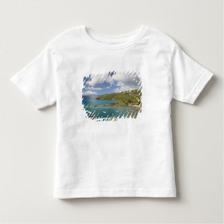 FRENCH WEST INDIES (FWI), Guadaloupe, Basse, Toddler T-shirt