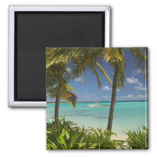 French West Indies, Guadaloupe, Grande Terre, 2 2 Inch Square Magnet