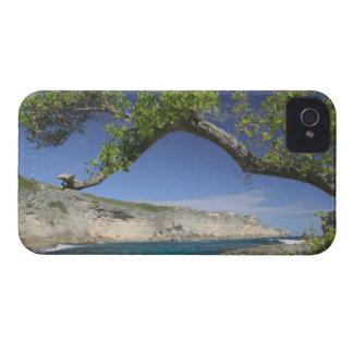 French West Indies, Guadaloupe, Grande Terre, La Case-Mate iPhone 4 Case