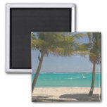 French West Indies, Guadaloupe, Marie, Galante 2 Magnet