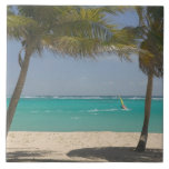 French West Indies, Guadaloupe, Marie, Galante 2 Ceramic Tile