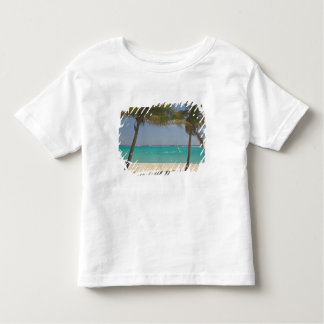 French West Indies, Guadaloupe, Marie, Galante 2 Toddler T-shirt
