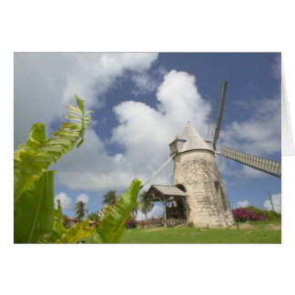 French West Indies, Guadaloupe, Marie, Galante Greeting Card