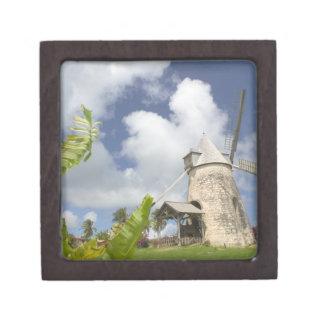 French West Indies, Guadaloupe, Marie, Galante Premium Trinket Box