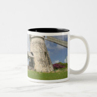 French West Indies, Guadaloupe, Marie, Galante Two-Tone Coffee Mug