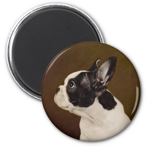 Frenchie 2 Inch Round Magnet