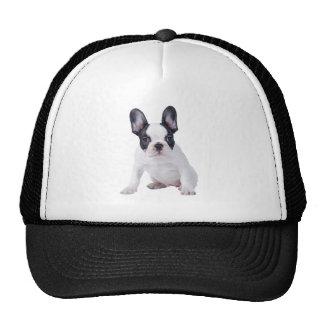 Frenchie - French bulldog puppy Trucker Hats