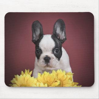 Frenchie - French bulldog puppy Mousepad