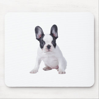 Frenchie - French bulldog puppy Mousepads