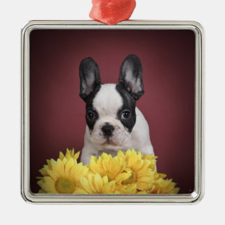 Frenchie - French bulldog puppy Square Metal Christmas Ornament