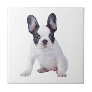 Frenchie - French bulldog puppy Tile