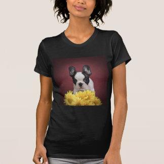 Frenchie - French bulldog puppy T-shirts