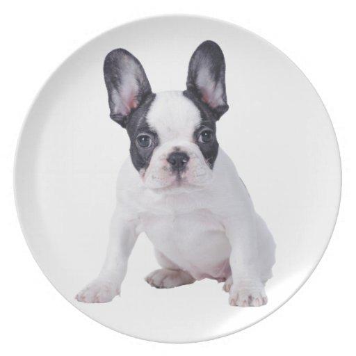 Frenchie - perrito del dogo francés plato de cena