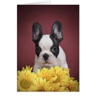 Frenchie - perrito del dogo francés tarjeta de felicitación