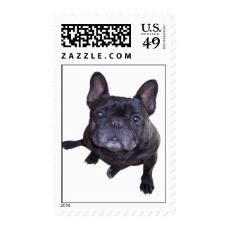 frenchie postage stamps