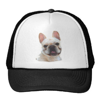 Frenchie Smiling hat