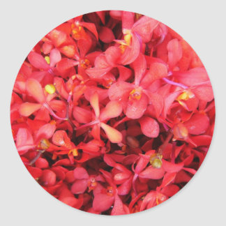 Frenesí rojo pegatina redonda