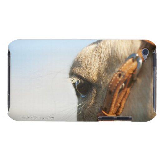 Freno del caballo iPod touch carcasas