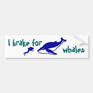 Freno para las ballenas pegatina de parachoque