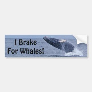 ¡Freno para las ballenas! Pegatina para el paracho Pegatina De Parachoque