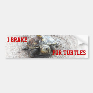 Freno para las tortugas pegatina para auto