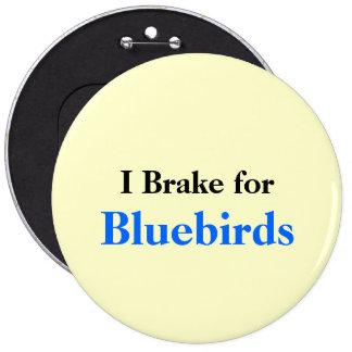 Freno para los Bluebirds Pin