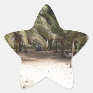Frente del Palm Beach Pegatina En Forma De Estrella