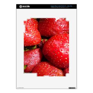 fresa iPad 3 skins