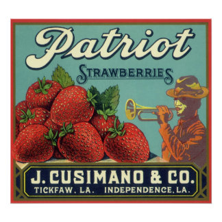Fresas del patriota del arte de la etiqueta del póster