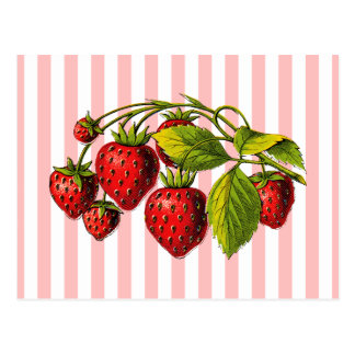 Fresas en rayas rosadas y blancas tarjeta postal