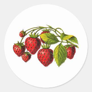 Fresas frescas pegatina redonda