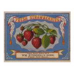Fresas frescas tarjeta postal