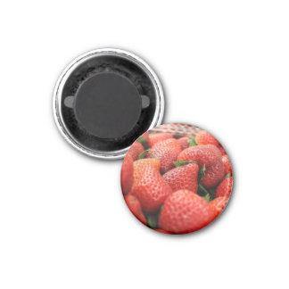 Fresas Imán Redondo 3 Cm