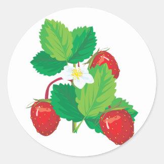 fresas jugosas realistas pegatina redonda