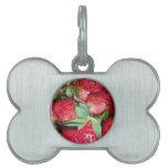 Fresas salvajes dulces placas de mascota