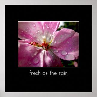 Fresco como la lluvia póster