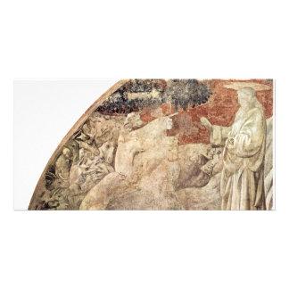 Frescos del viejo testamento en génesis en el clau tarjeta fotografica